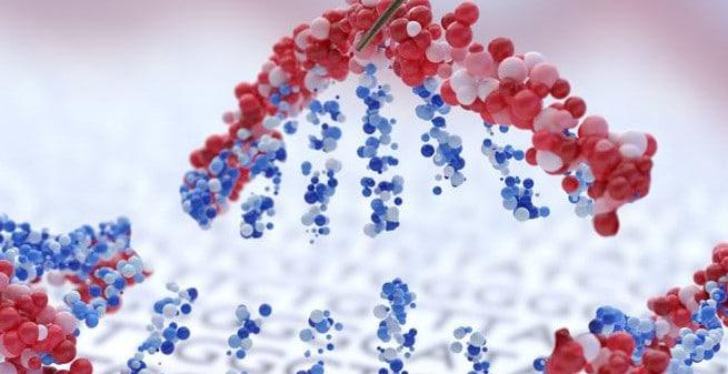 CARMEN, el nuevo y potente CRISPR que sirve como herramienta de diagnóstico