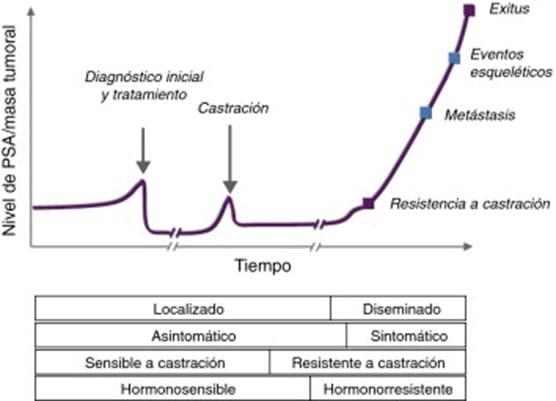 historia cáncer próstata