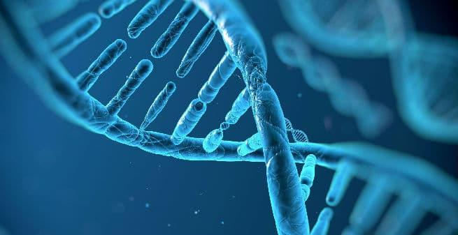 La nueva revolución en la edición génica: el Prime Editing, un paso más allá de CRISPR