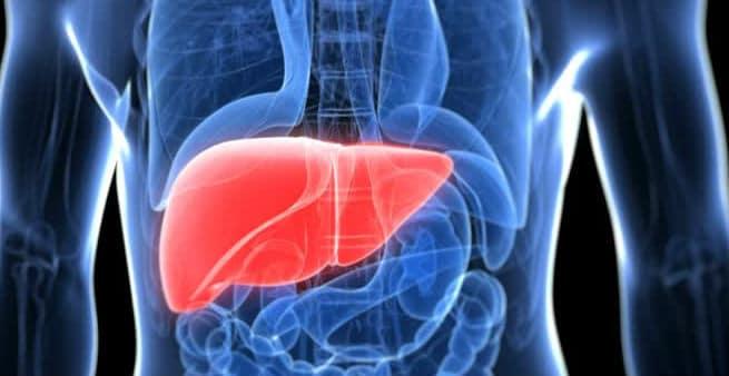 ¿Cómo se activan unos oncogenes para provocar un carcinoma de hígado?