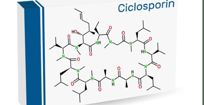 El descubrimiento de la ciclosporina: cuando te vas de vacaciones y vuelves con un medicamento que cambia la vida de mucha gente