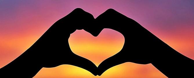 corazon funcionamineto