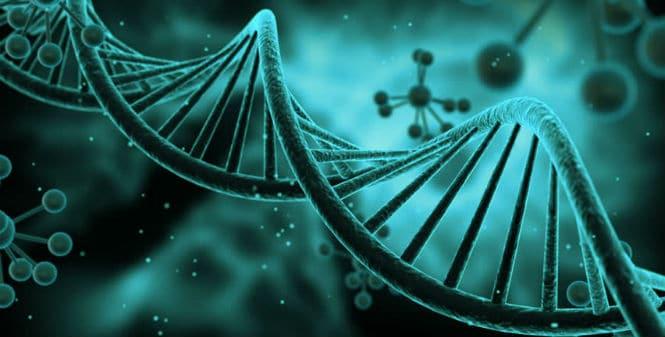 Más investigaciones con CRISPR