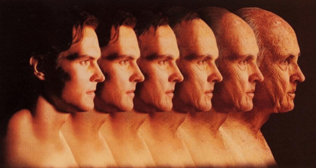 Cambios biológicos en el envejecimiento | Dciencia